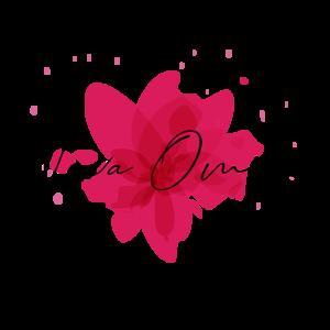 Nova Omino AB logo