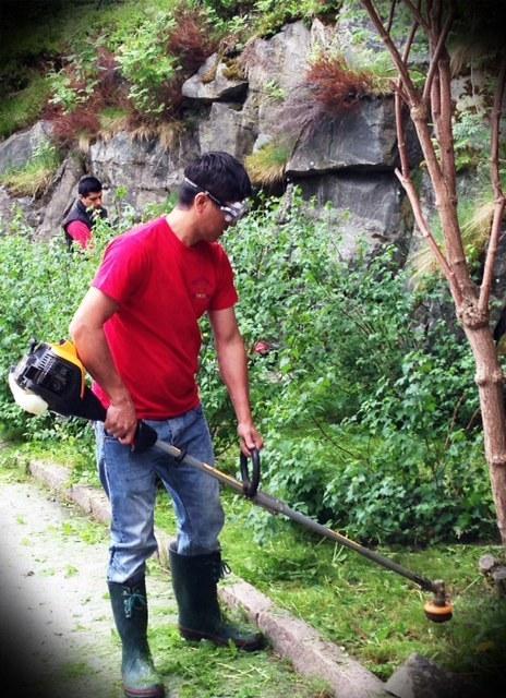 Trädgårdsarbeten