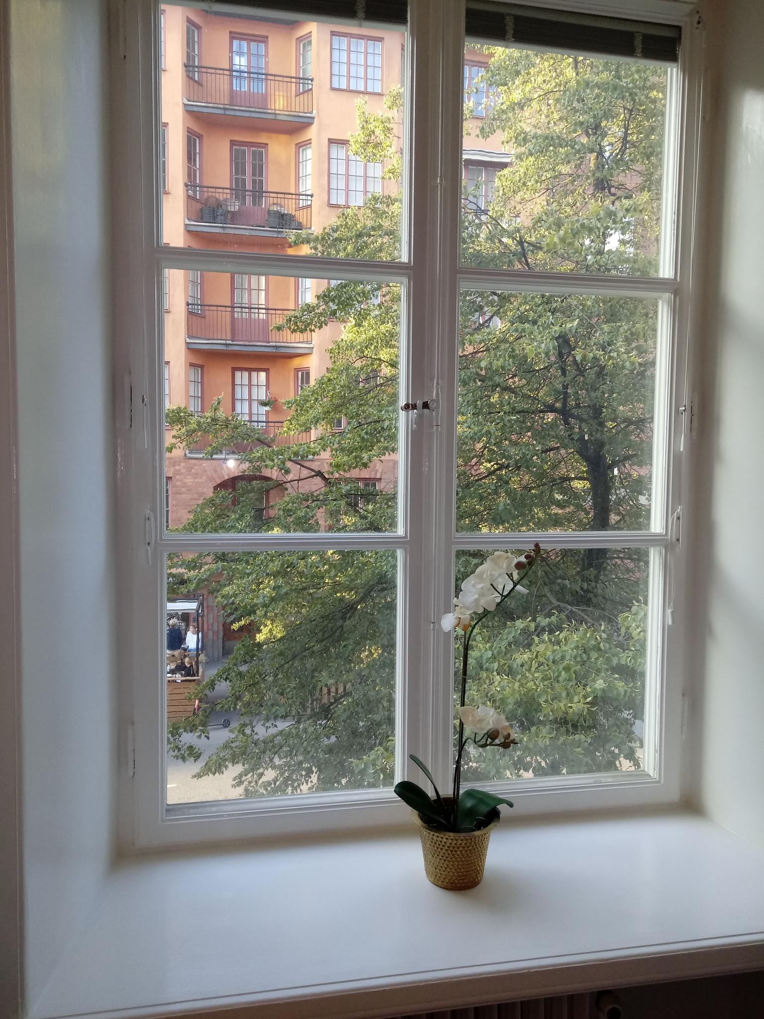 Målning av bla. fönster och köksstommar på Rörstrandsgatan